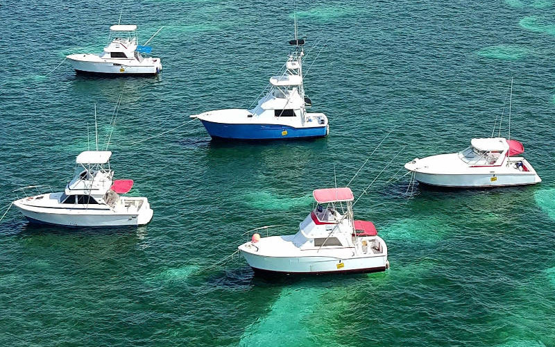 Gone Fishing Deep Sea Fishing Tours in Punta Cana, Bavaro, Dominican Republic