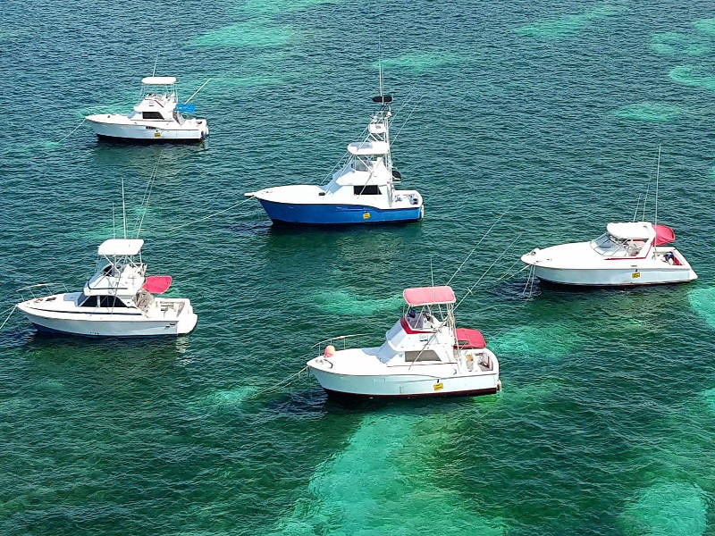 Gone Fishing Charters Punta Cana - Deep Sea Fishing Private & Shared Charters