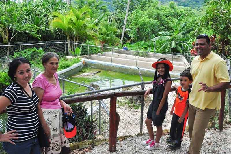 families visits ranch to see local crocodiles on Outbacks Ranch in Punta Cana