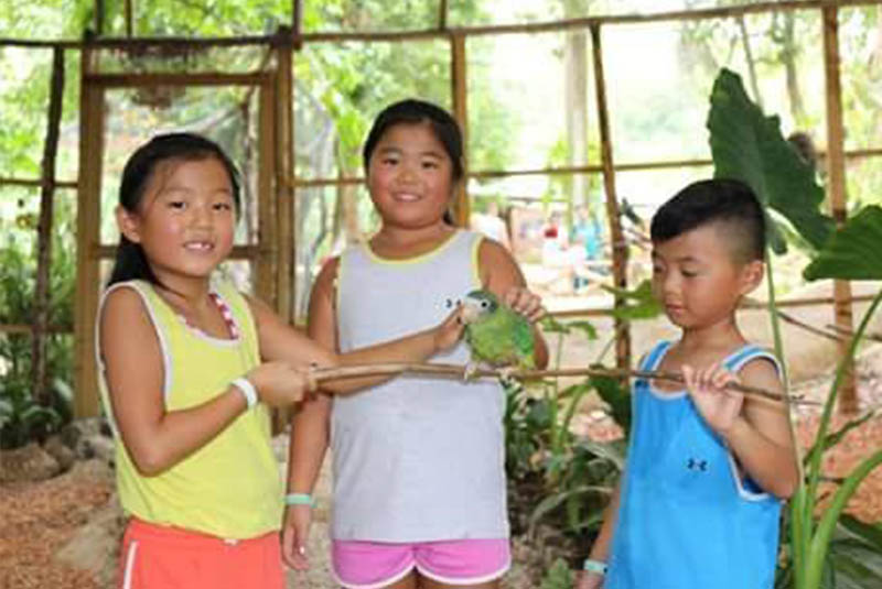 children interacting with parrot on Outback Ranch - Dominican Republic