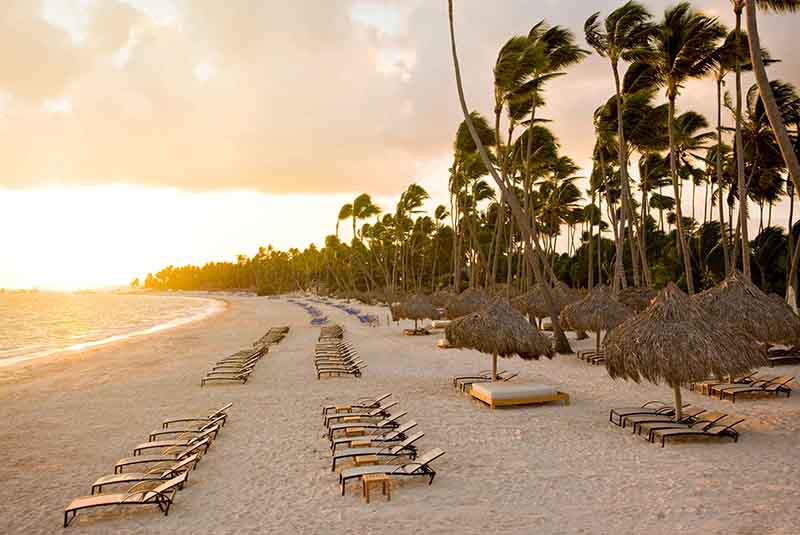 hotels beach front with sunbeds at Melia Caribe hotel in Punta Cana - Dominican Republic