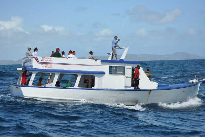 Whale watching boat tours in Samana - Dominican Republic