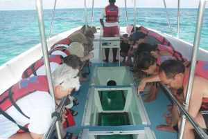 people watching fish on glass bottom boat in Punta Cana - Dominican Republic