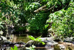 Outback Adventures - Dominican Republic Hiking Tour to Countryside