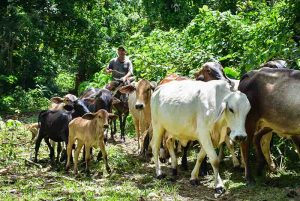 Outback Adventures - Eco Trails Dominican Republic