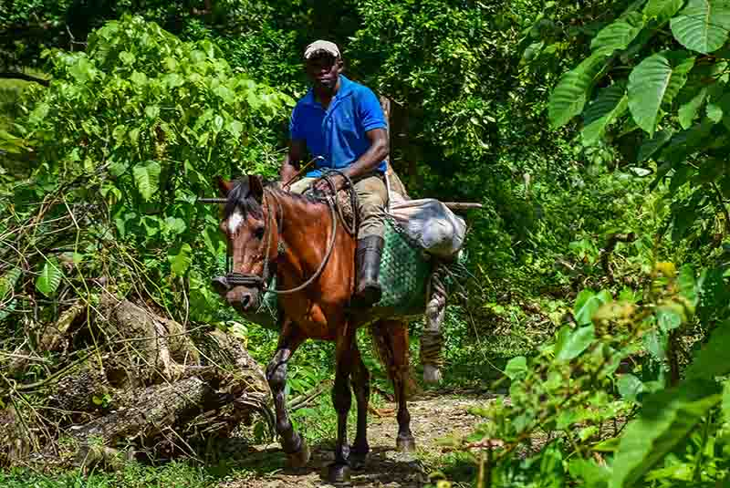 Outback Adventures - Hiking Trips Dominican Republic