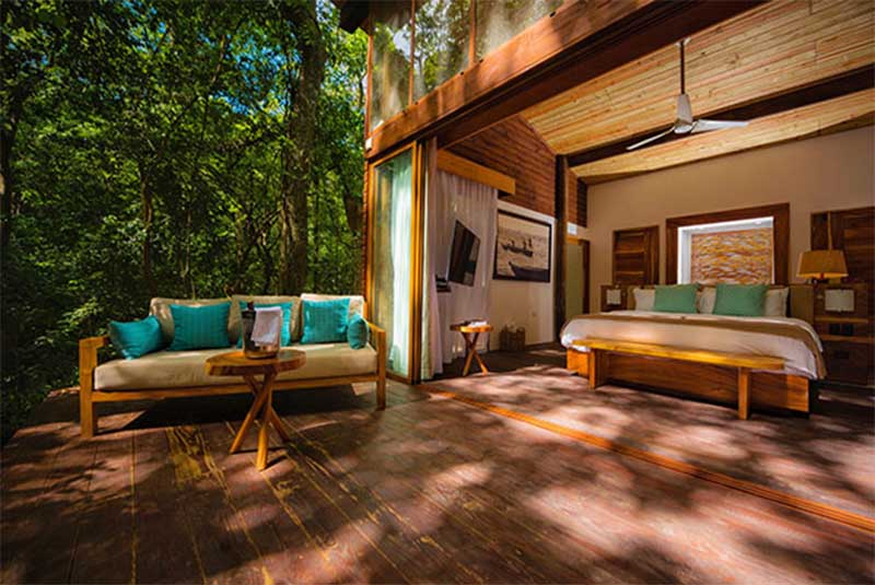 open room in the middle of the jungle in dominican republic, barahona