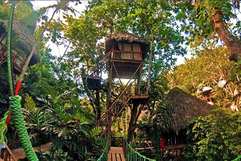 tree house in the jungle of samana dominican republic