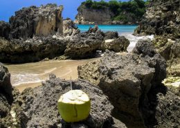 Coconut drink on a rock in Macao Beach - Outback Adventures Dominican Republic