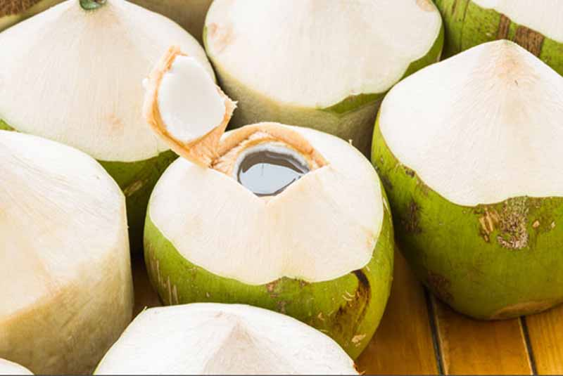 green coconut with coconut water - Dominican Republic