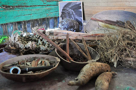 local medicine and herbs , Punta Cana