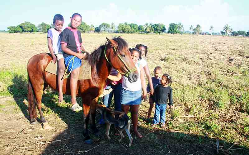 children on horse in sugar cane fields of San Rafael de Yuma - Higuey - Dominican Republic
