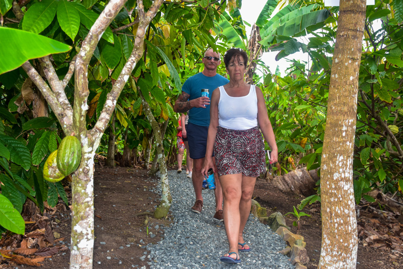 Outback Adventures Punta Cana Cacaco plantation trail Things to do Punta Cana